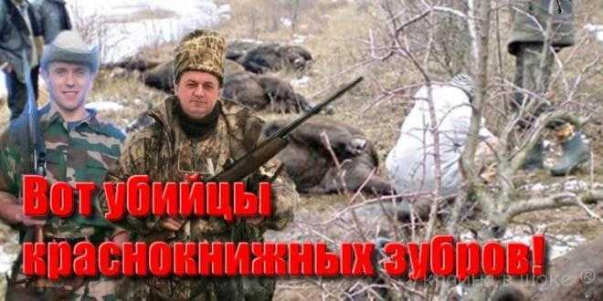 Убийцами краснокнижных зубров оказались нардепы от БПП И.Мельничук и Ю.Македон