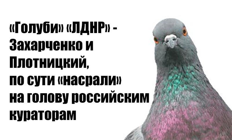 «Голуби» «ДНР» – Захарченко и Плотницкий, по сути «насрали» на голову российским кураторам