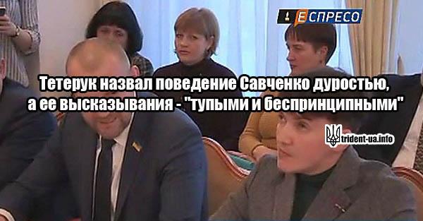 """Тетерук назвал поведение Савченко дуростью, а ее высказывания – """"тупыми и беспринципными"""""""