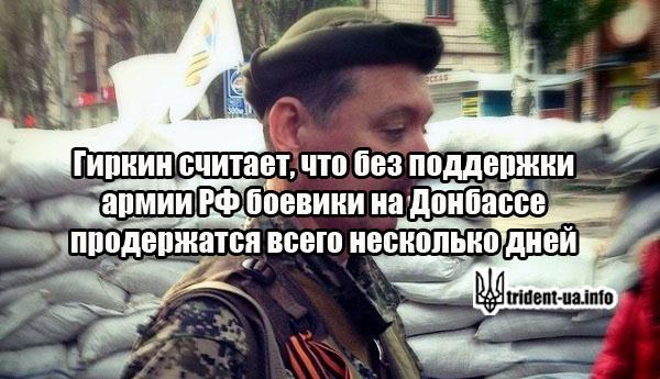 Гиркин считает, что без поддержки армии РФ боевики на Донбассе продержатся всего несколько дней