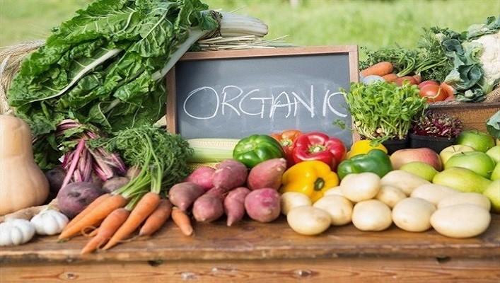 В Україні прийняли Закон щодо виробництва, обігу та маркування органічної продукції
