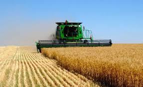 Експорт аграрної продукції з України до ЄС сягнув 4 млрд доларів